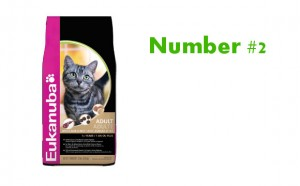 Eukanuba Best Cat Food number 2
