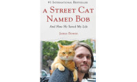 "Meet ""A Street Cat Named Bob"" at Cats Place"