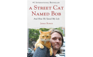 A street cat named Bob at Cats Place